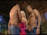 Блонди и три самца
