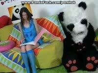 Большая игрушечная панда внезапно ожила и отодрала молодую хозяйку