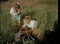 Подружки балуются на поле с пенисом бродяги