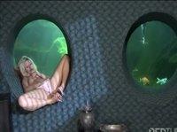 Осталась на ночь в океанариуме